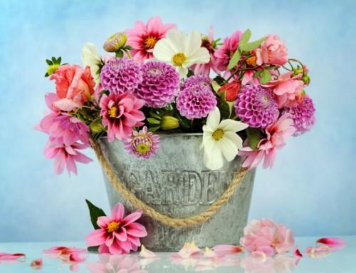 Las flores que sí debes regalar en el Día de San Valentín