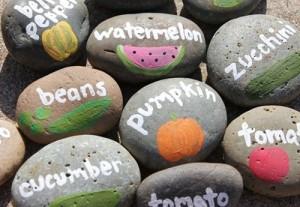 huerto-urbano-piedras